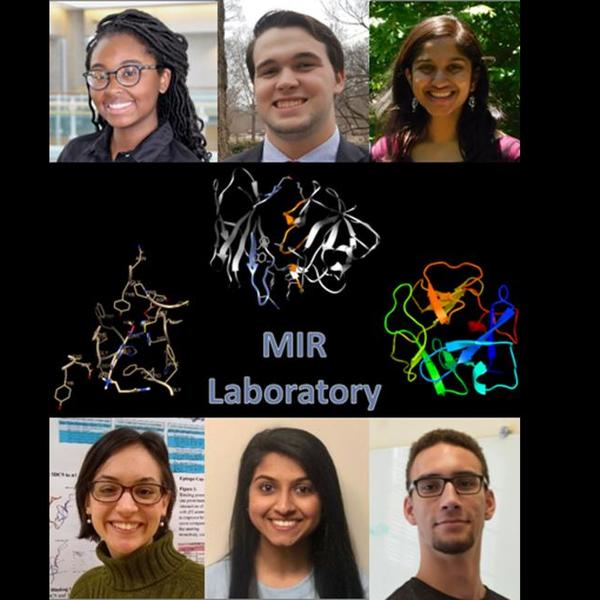 MIR Students Publish Research That Could Aid in Therapy for Autoimmune Disorders and Cancer