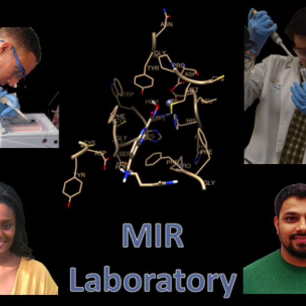 MIR Lab Students Publish Again